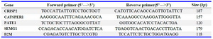 Table 1. Primer sequences and their related PCR product sizes used for real-time RT-PCR
