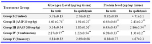Table 5. Effects of drug treatments after 45 days of treatment on glycogen and protein level in reproductive organs of wistar rats