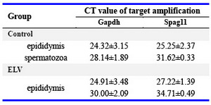Table 1. CT value of target amplification
