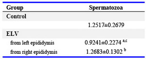 Table 4. The analytical results of corrected optical density of SPAG11E by immunofluorescence on the spermatozoa from the epididymal cauda in the ELV rats (Mean±SD)
